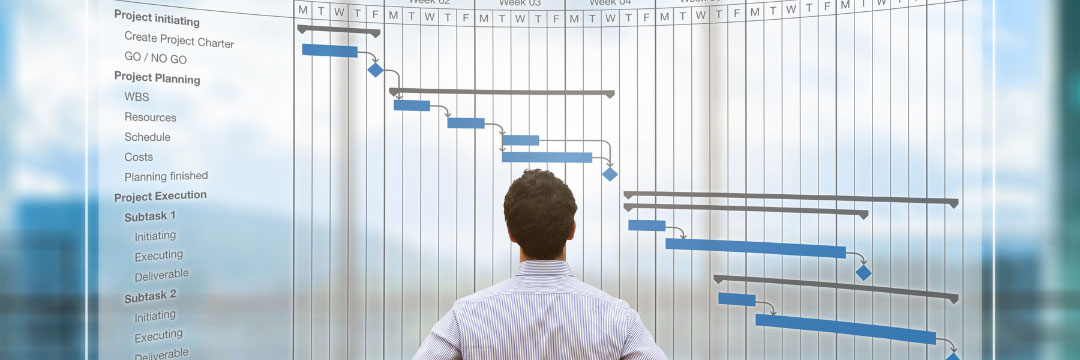 Man looking at large wall sized project timeline document